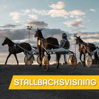 Stallbacksvisning