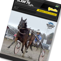 Solvalla banprogram 19 November 2017