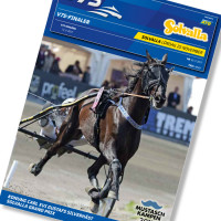 Solvalla banprogram 25 November 2017